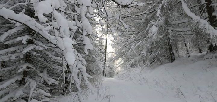 #sogehtwinter #winterwonderland #erzgebirge …